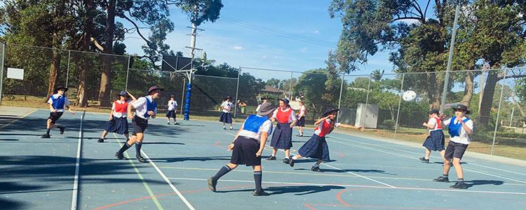 Sports GSCS